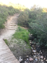 Mission Trails